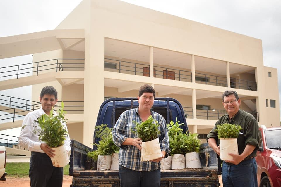 Donación de más de mil plantines por parte del Centro Ambiental de la Entidad Binacional Itaipu
